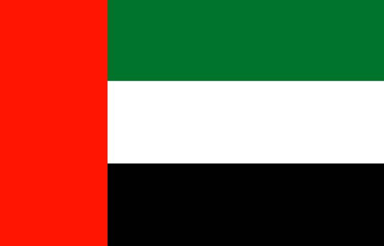 Serviciu profesional de traducere Italiană Arabă și Arabă Italiană