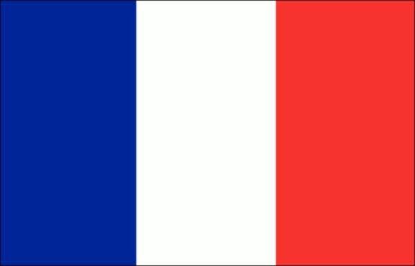 Servizi di traduzioni professionali della lingua francese