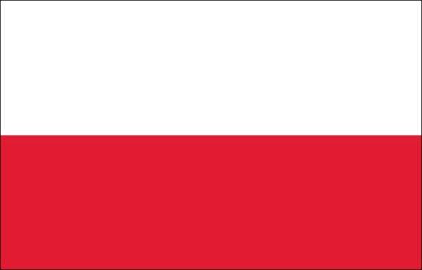 Servizi di traduzioni professionali della lingua polacca