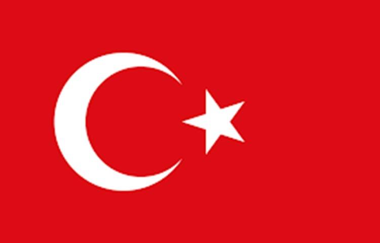 Tradurre turco italiano